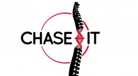Ch'ase gene therapy for spinal cord injury Joost Verhaagen Liz Bradbury