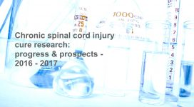 Onderzoek naar dwarslaesie behandeling en genezing 2016 - 2017